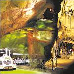 Grotte de la Cocaliere - Gard 30
