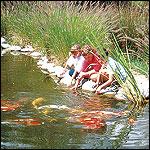 visite au Jardins aquatiques