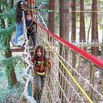 Forêt de l'Aventure